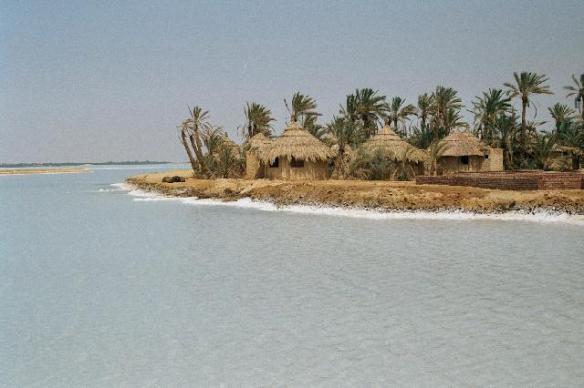 siwa_oasis4354